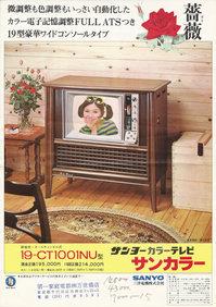 サンヨーサンカラー19-CT1001Nパンフレット表