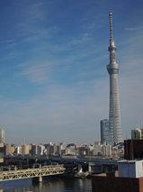 東武鉄橋・ツリー.jpg
