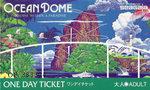 オーシャンドームチケット1.jpg