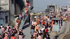 竹の家塔屋階段.jpg